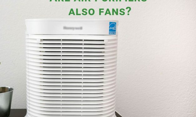 Are air purifiers also fans? Similarities and differences explained