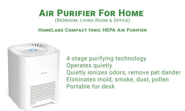 HomeLabs Compact Ionic HEPA Air Purifier Review
